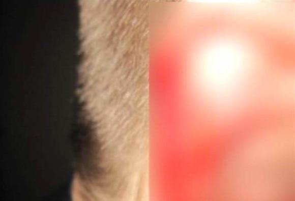 Man bites priest's ear to enter temple on Mahashivratri