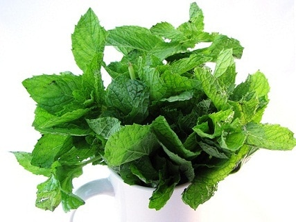 What Are the Benefits of Eating Mint Leaves