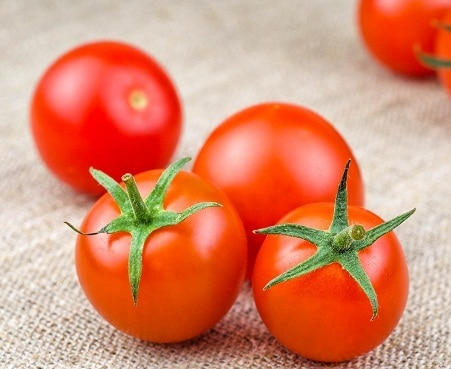 Tomato extracts can fight stomach cancer: study