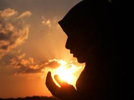 गौहत्या के खिलाफ जारी फतवों का प्रचार करेगा शिया पर्सनल लॉ बोर्ड, तीन तलाक खत्म करने की मांग