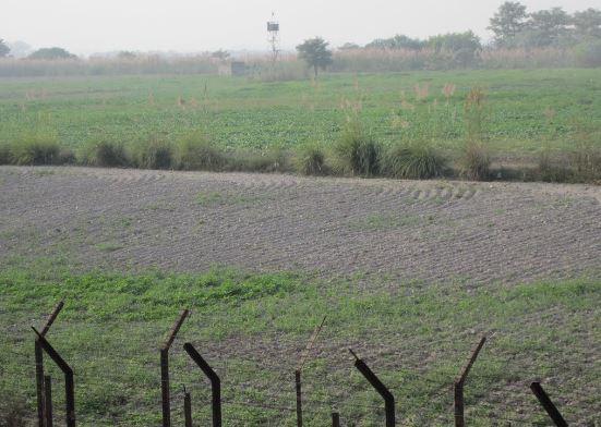 पंजाब के गुरदासपुर में घुसपैठ की कोशिश में फायरिंग, सर्च ऑपरेशन जारी