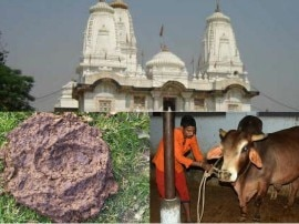 स्वदेशी जैविक खाद के उत्पादन में आगे गोरखनाथ मंदिरः गोबर से खाद बनाकर बड़ी कमाई !