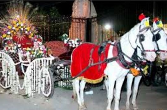 Alwar: bride went on a horse cart for her marriage ceremony