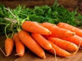 कॉलेस्ट्रॉल कम करने से लेकर पिंपल्स भी दूर कर सकती है गाजर!