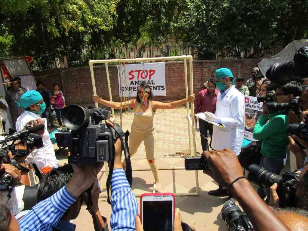 Woman 'Experimented On' in Delhi by PETA to send a message against animal cruelty