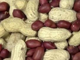 वजन कम करने से लेकर दिल के मरीजों को हेल्दी रखती है मूंगफली!