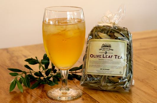 Rajasthan to launch olive tea next month