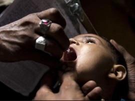 खुशखबरी! अब पौधे से तैयार हुई वैक्सीन खत्म करेगी पोलियो वायरस