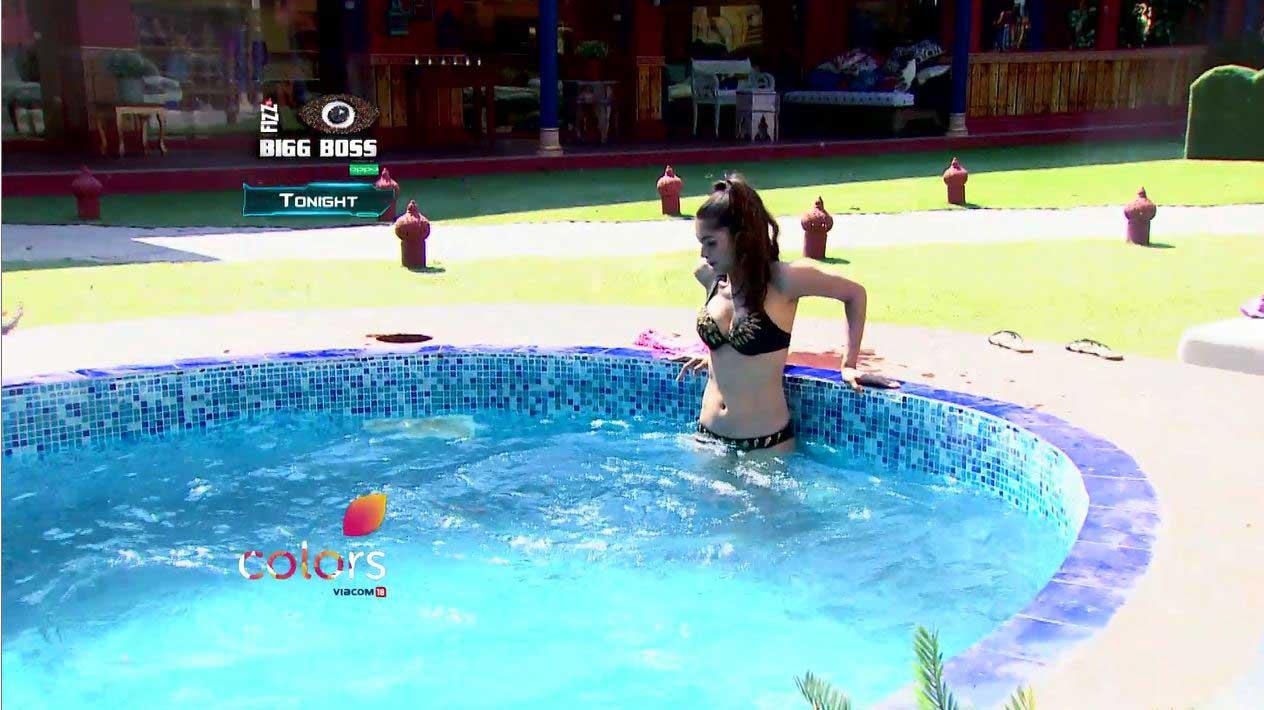 Bigg Boss: Bikini babes of the house over the years