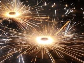 BLOG: पटाखों से पशु-पक्षियों को अवश्य बचाइएगा: शुभ दीपावली!