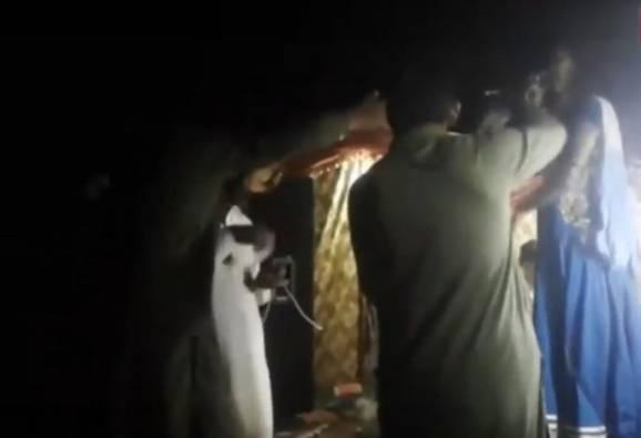 ভয়াবহ ভিডিও: মঞ্চে গানের সময়ই অন্তঃস্বত্ত্বা পাকিস্তানি গায়িকাকে গুলি করে খুন