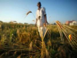 मराठवाड्यात गेल्या आठ दिवसांमध्ये 34 शेतकरी आत्महत्या