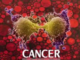 रोजच्या वापरातील 'या' 8 वस्तूंपासून 'कॅन्सर'चा धोका!