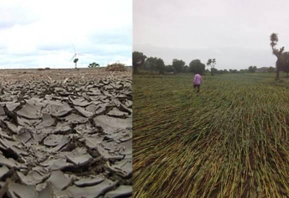 दुष्काळात शेतीपंप वापरायला पाणीच नाही, तरीही लाखोंचं बिल
