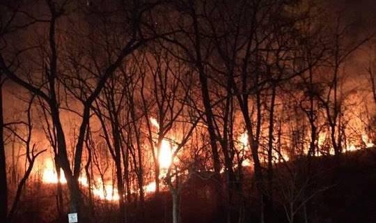 नागपूरमधील मुख्यमंत्र्यांच्या घरासमोर सेमिनरी हिल्स परिसरात आग