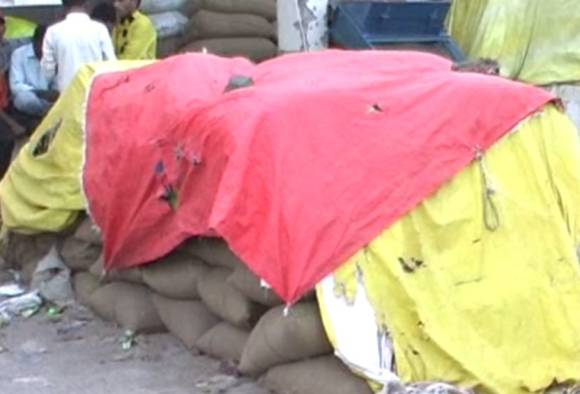 1694 toor bags seized in Jalna latest updates