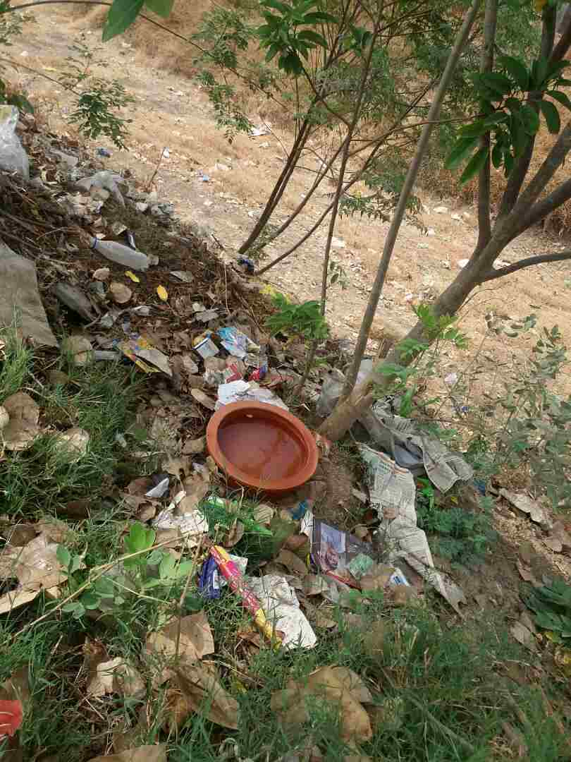 water for birds on tree Shirur kasar man initiative for birds latest updates