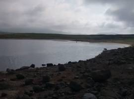 वैतरणा धरणात मासेमारीवर बंदी, जलसंपदा विभागाची कारवाई