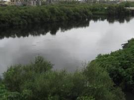 क्षुल्लक वादाचा राग, मुंबईत 73 वर्षीय वृद्धेची नदीत उडी