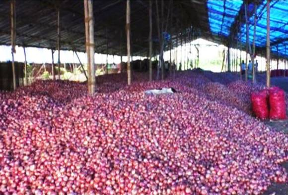 Nashik onion traders may star trading today