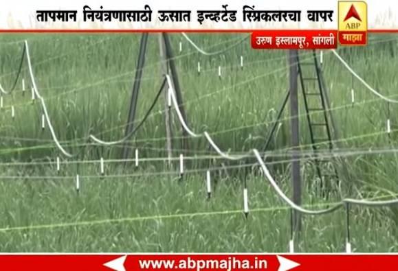 712 : Sangli : Sugarcane sprinkler Story of Ashok Khot