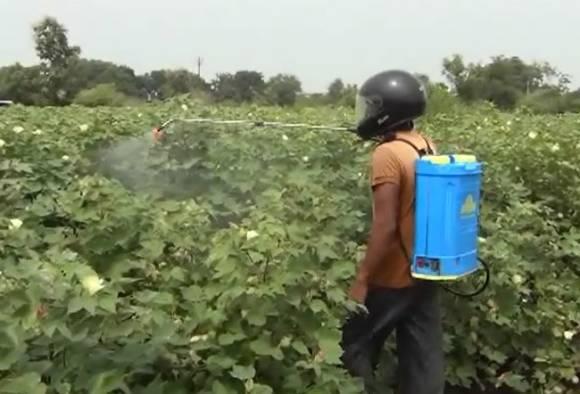Helmet used for pesticide sprain in Wardha latest updates