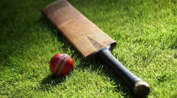cricket600_1493350931