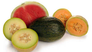 watermelon-and-muskmelon-for-weight-loss-300x168
