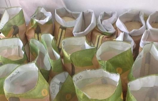 ਸਸਤੀ ਬਾਸਮਤੀ ਖ਼ਰੀਦ, ਮਹਿੰਗੇ ਭਾਅ ਵੇਚਣ ਲੱਗੇ ਸੈਲਰਾਂ ਵਾਲੇ