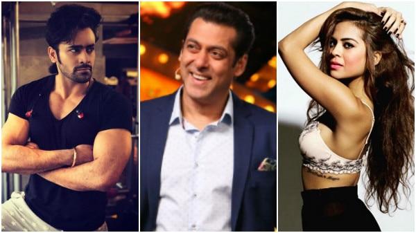 Bigg Boss 11: Pearl V Puri & Sana Saeed in Salman Khan's show?
