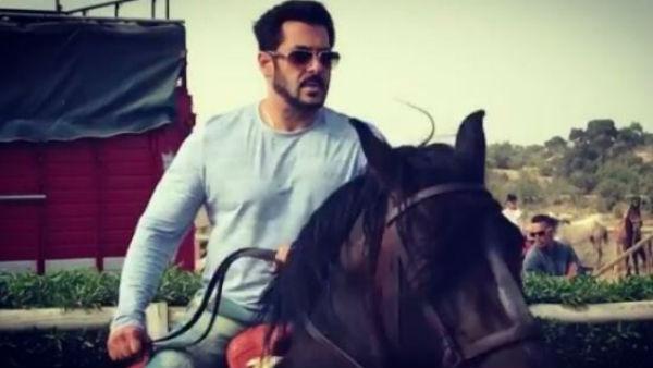 WATCH: Salman Khan takes horse riding lessons for 'Tiger Zinda Hai'!