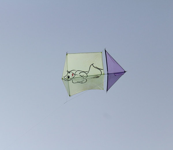3-kite with nude iamge fly in international kite festival 2017 held in vadodara