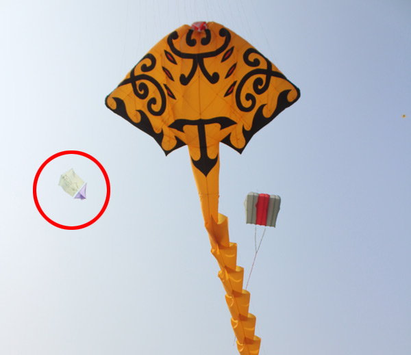 4-kite with nude iamge fly in international kite festival 2017 held in vadodara