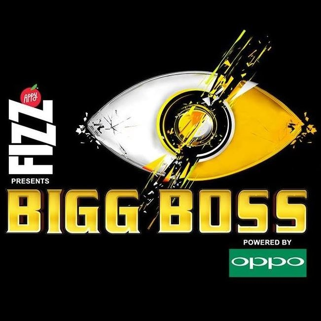 6-bigg boss 11 that is what contestant to do for earning money