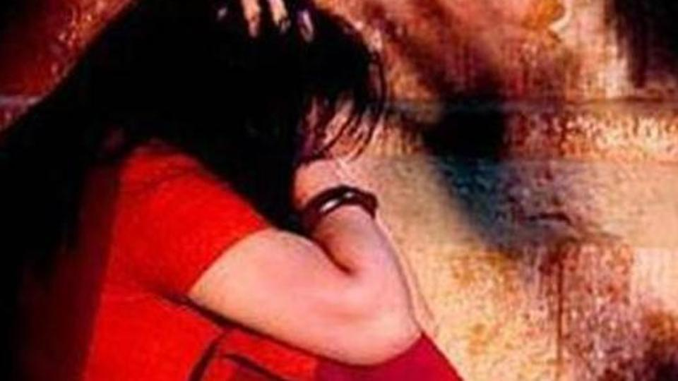 3-gujarat govt says to high court that oral sex is not rape but domestic violence