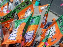 ગુજરાત ભાજપના ટોચના નેતાના ભત્રીજાએ બીટકોઈન વટાવી 12 કરોડ અપાવ્યા, જાણો વિગત