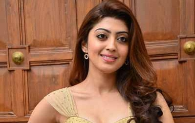 Actress Pranitha injured in road accident
